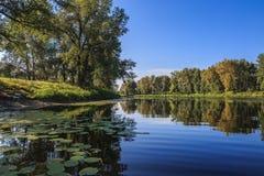 SOMMAREN landskap Fotografering för Bildbyråer