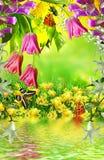 SOMMAREN landskap Blommor Arkivfoton