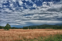 Sommaren landskap i en molnig dag Arkivbild