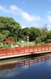 Sommarjapanträdgård. Landskap. Arkivfoto