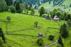 Sommaren landskap i nord av Rumänien Royaltyfria Bilder