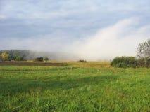 Sommarfält i morgonen royaltyfri bild