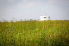 Sommarfält, Kaluga region, Ryssland Royaltyfri Foto