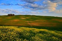 Sommarfält med mörker - blå himmel med vita clousds, Tuscany, Italien Tuscany landskap i sommar Grön äng för sommar med trädgro Royaltyfria Foton