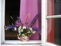 sommarfönster Royaltyfri Bild