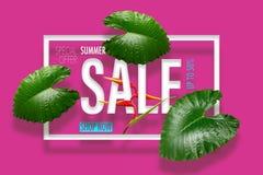 Sommarförsäljningsbaner med tropisk grön sidaheliconiablomma b Fotografering för Bildbyråer