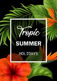 Sommarförsäljningsbaner med tropiska blommor och sidor för befordran Royaltyfri Bild