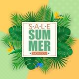 Sommarförsäljningsbanret, affischmallen med palmblad och djungeln spricker ut Blom- tropisk sommarbakgrund Arkivfoton