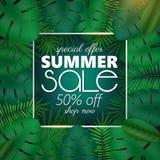 Sommarförsäljningsbanret, affischmallen med palmblad och djungeln spricker ut Blom- tropisk sommarbakgrund Royaltyfria Foton