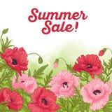 Sommarförsäljningskort med den röda och rosa vallmo på grön vattenfärgbac Royaltyfri Bild