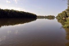 Sommarflod med träd på varje kust Arkivbild