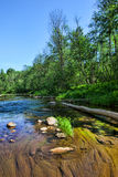 Sommarflodplats Arkivfoto