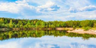 SommarForest And River Under Blue himmel royaltyfri bild