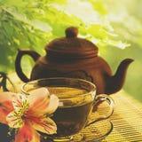Sommarfrukost Royaltyfri Bild