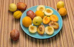 Sommarfrukter: äpplen päron, aprikors, plommoner arkivbild