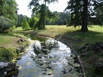Sommargräsplan parkerar floden Royaltyfria Bilder