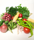 sommargrönsaker Arkivfoto