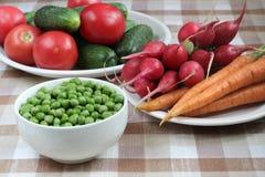 Sommargrönsaker Royaltyfria Foton