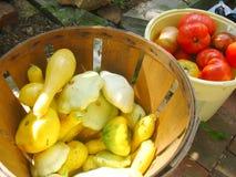 sommargrönsaker Arkivfoton