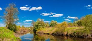 SommarGreen River landskap royaltyfria bilder