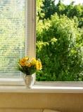 Sommarguling blommar på widnow - fönsterbräda på morgonen Royaltyfri Bild