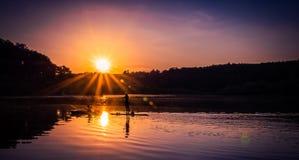 Sommargyckel på vattnet Arkivbild