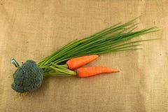 Sommarhantverkaregrönsaker och gräsplaner på kanfas Royaltyfri Foto