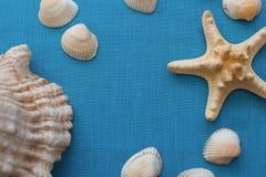 Sommarhavsbakgrund - skal, stjärna på en blå tygbakgrund Arkivfoto