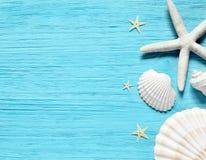 Sommarhavsbakgrund - skal, stjärna på en träblå bakgrund royaltyfri bild