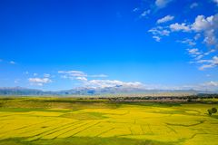 Sommarjordbruksmark i Tianshui, Gansu landskap arkivbild