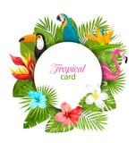 Sommarkort med tropiska växter, hibiskus, Plumeria, flamingo, papegoja, tukan stock illustrationer