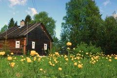 Sommarlandshus Arkivbild