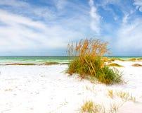 Sommarlandskap av en härlig Florida strand Arkivfoto