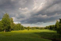 Sommarlandskap av gröna trän och floden som är bevuxet med lösa gräs Äng som omges av en blandad skog arkivbild