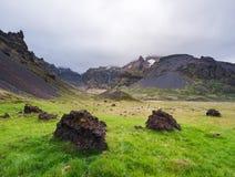 Sommarlandskap av Island royaltyfri foto
