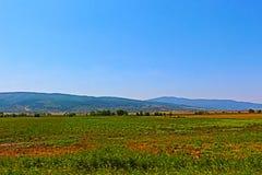 Sommarlandskap från sydvästlig Bulgarien inklusive slättar, blå himmel och berget Royaltyfri Fotografi