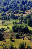 Sommarlandskap i Apuseni berg Arkivfoton