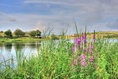 Sommarlandskap i bulgarisk bygd Arkivfoton