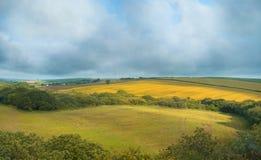 Sommarlandskap i Cornwall, UK Fotografering för Bildbyråer
