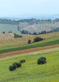 Sommarlandskap i gränser (Italien) Royaltyfria Foton