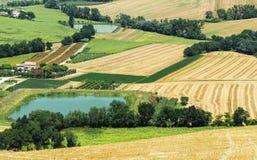 Sommarlandskap i gränser (Italien) Arkivbilder