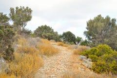 Sommarlandskap i Kreta royaltyfri bild