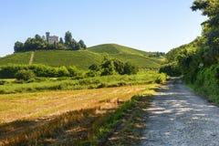 Sommarlandskap i Langhe (Italien) Royaltyfri Foto