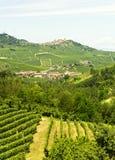 Sommarlandskap i Langhe (Italien) Fotografering för Bildbyråer