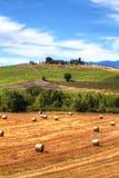 Sommarlandskap i Val D 'Orcia, Tuscany royaltyfria foton