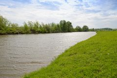 Sommarlandskap med en flod och kuster royaltyfri bild