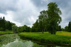 Sommarlandskap med floden i parkera av Pavlovsk arkivbilder