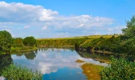 Sommarlandskap med floden och skogen Royaltyfri Bild