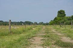 Sommarlandskap med grönt gräs och vägen Arkivfoto