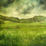 Sommarlandskap med tappningfärger Royaltyfri Foto